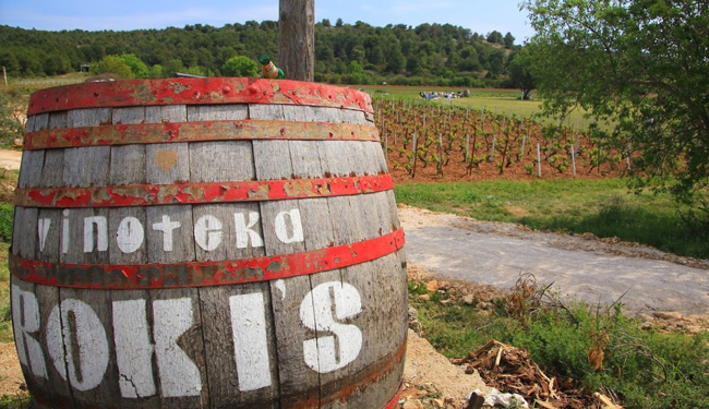 Wine-tasting-charter-Vis